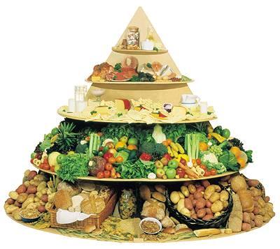 CISEO-industria-alimentara
